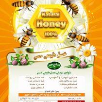 عسل طبیعی حس
